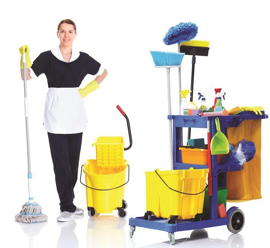 temizlik için kullanılacak ürünler